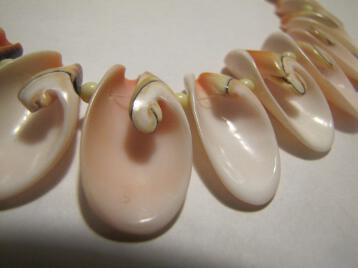 Unusual Large Conch Sea Shell Hawaiian Necklace